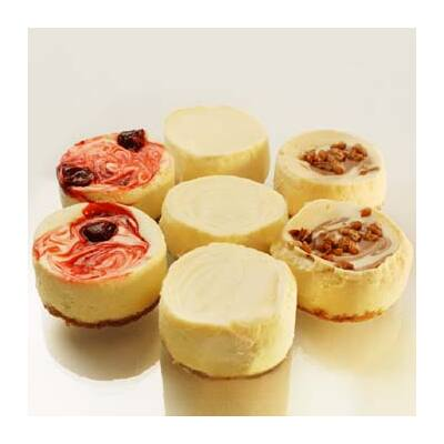 Hospitality Cheesecake  Mix - karton